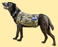 Dog pack: Camo Pack