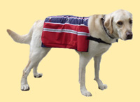 Dog pack: Patriotic 1 Pack